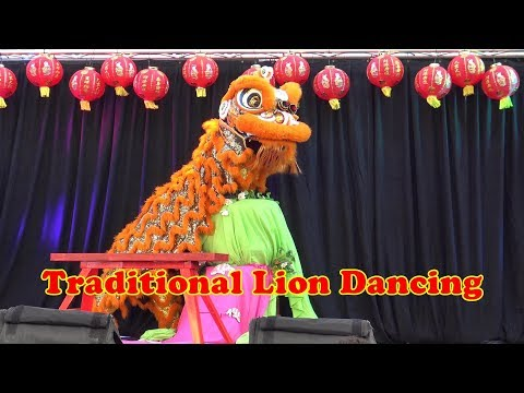 Traditional Lion Dancing - Brisbane Australia ... 17 - 2 - 2017 .