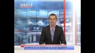 видео Красная книга Чувашской республики