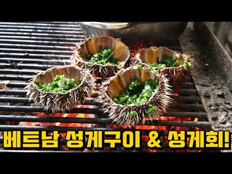 베트남 길거리 음식 | 성게구이 & 성게회 먹방