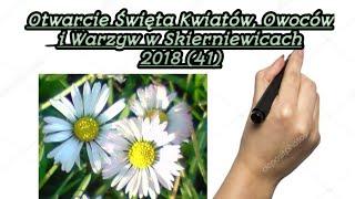 Otwarcie Święta Kwiatów, Owoców i Warzyw w Skierniewicach 15 - 16.09.2018 r.
