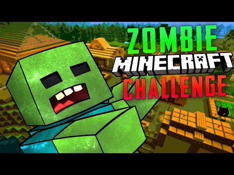 ZOMBIE MINECRAFT CHALLENGE (Call of Duty Zombies)