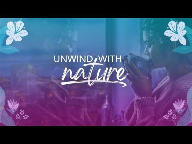 Unwind with nature - Pukka's Night Time tea