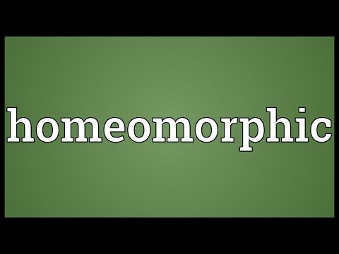 Homeomorphic Meaning