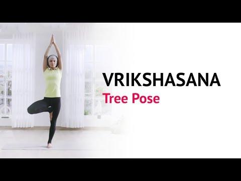 Vrikshasana Tree Pose | Benefits | Steps | Yogic Fitness | Art Of Living Yoga
