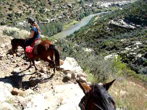 (not that easy) horseriding, Lesotho