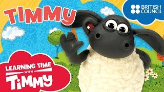 Meet Timmy | Learning Time with Timmy | Cartoons for Kids