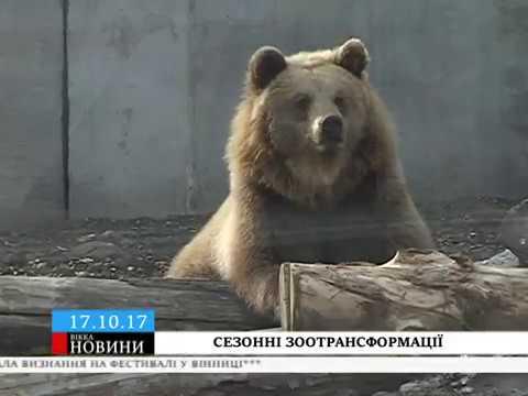 ТРК ВіККА: Мешканців черкаського зоопарку почали озимовувати їжею та житлом
