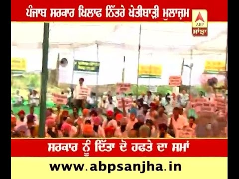Agriculture officers and Farmers protested against Government