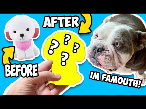 Squishy Makeover! Transforming Squishes Into My Pets! Dog and Parrot Squishes!