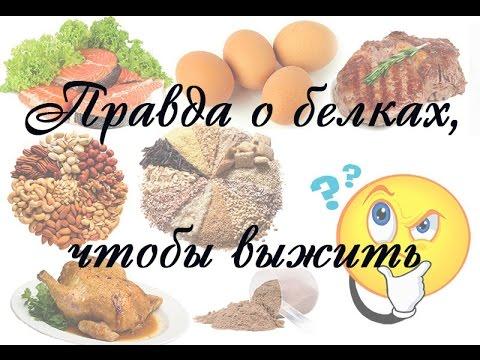 Правильное питание белки жиры и углеводы