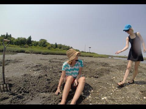GoPro: Clamming in Rhode Island