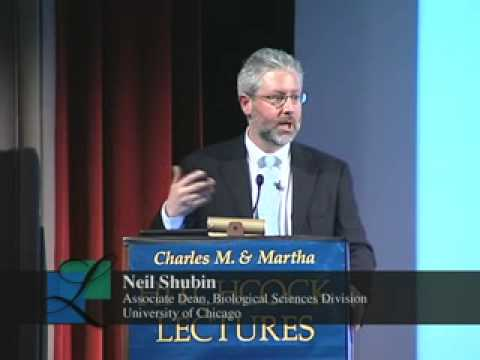 The Great Transitions In Evolution With Neil Shubin