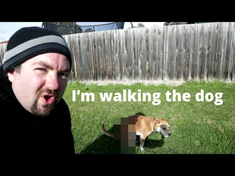 """i'm-walking-the-dog""-(daily-vlog-#38)"