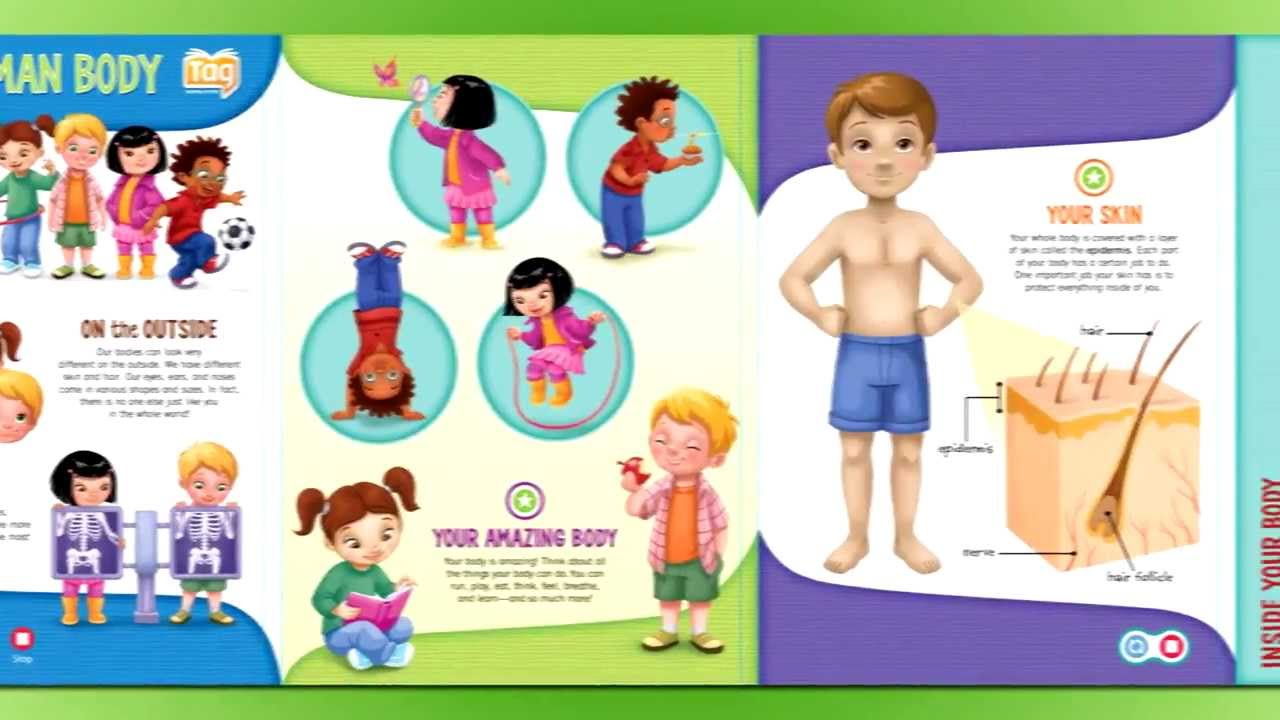 Leapfrog Tag Interactive Human Body Discovery Youtube