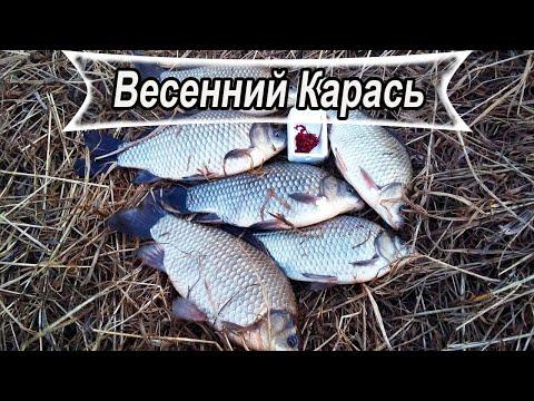 Весенний КРУПНЫЙ КАРАСЬ на лёгкую ДОНКУ! Рыбалка 2020!