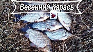 Весенний КРУПНЫЙ КАРАСЬ на лёгкую ДОНКУ Рыбалка 2020