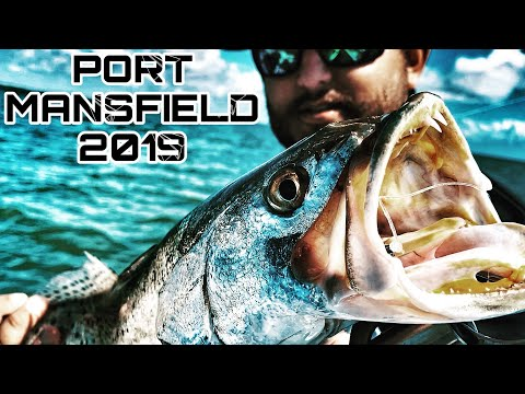 Finding THE TROUT!! Arroyo City | PORT MANSFIELD FISHING 2019 (A.M SOFT PLASTIC LURES)