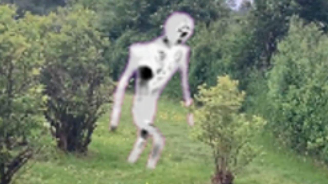 Hole Man sighting ( Trevor Henderson Monster )
