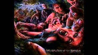 INFESTED ENTRAILS - Born With a Barbed Wire Cock