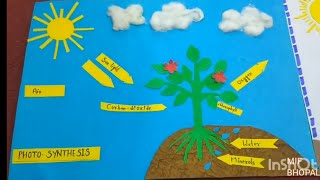 PHOTOSYNTHESIS - Science project work by the students & all Friday's activities, MIF BHOPAL