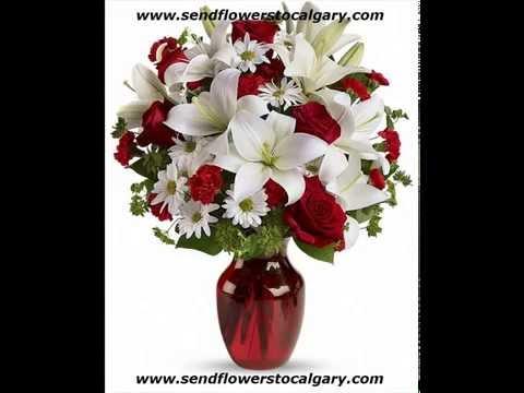 calgary flower shop kensington