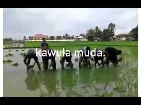 Kawula muda-Roma Irama