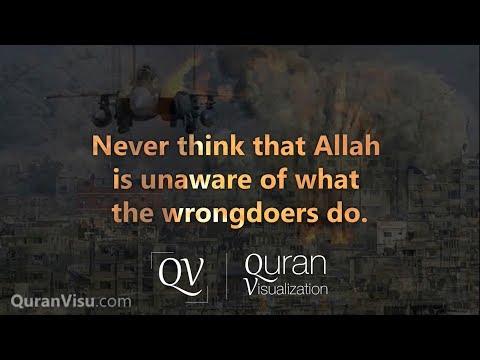Surah Ibrahim | Verse 28-52 | Mishary Rashid Al Afasy | Quran Visualization
