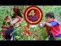 Hamra Golgappi Chahi Seema Singh Comedy & Romance Scene |