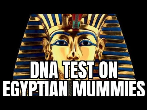 """WHAT""? DNA Test Prove That ""Egyptian"" Mummies Are Not African! My analysis of this news story."