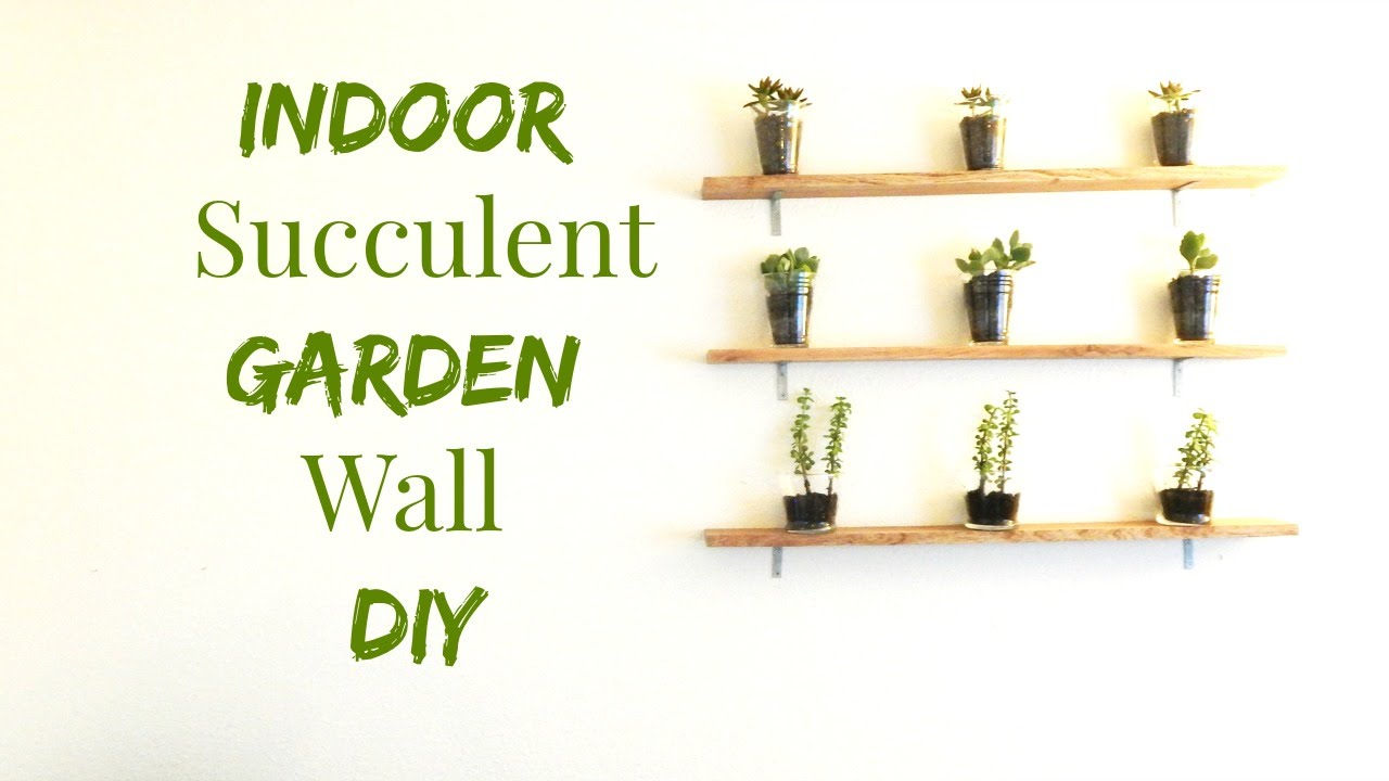 How to Make An Indoor Succulent Garden- Wall Art DIY- Minimalist ...