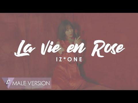 MALE VERSION | IZ*ONE - La Vie en Rose