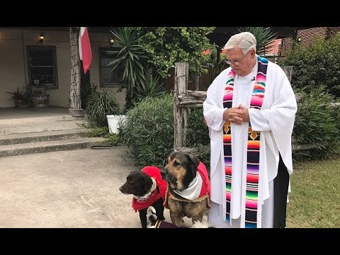The Texas Bucket List – The Priest with Pups in Mission