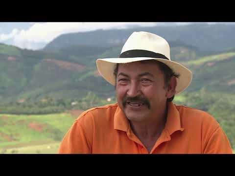 Los tamales, la coincidencia digital de Luis Alberto I N3 C 33 #ViveDigitalTV