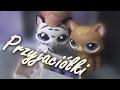 LPS Music Video : Przyjaciółki [Best Friends]
