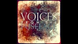 Voices from the fuselage - Oceans reprise