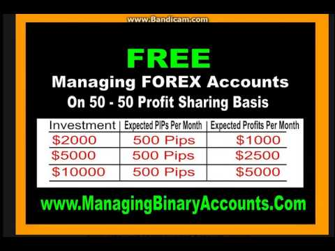 Forex trader funding review