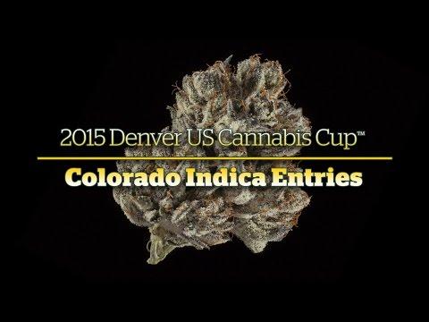 2015 Denver Cannabis Cup: Colorado Indica Entries