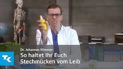 So haltet ihr euch Stechmücken vom Leib   Dr. Johannes Wimmer