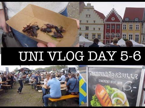 GERMAN UNI VLOG DAY 5-6 : 1st GREIFSWALD STREET FOOD FESTIVAL