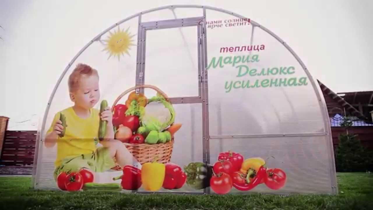 Теплица мария делюкс новосибирск