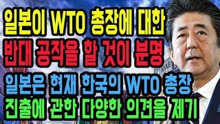 일본은 현재 한국의 WTO 총장 진출에 관한 다양한 의견을 제기하고 있는 현상황! 일본이 WTO 총장에 대한 반대 공작을 할 것이 분명 분석 [JAPANTV]