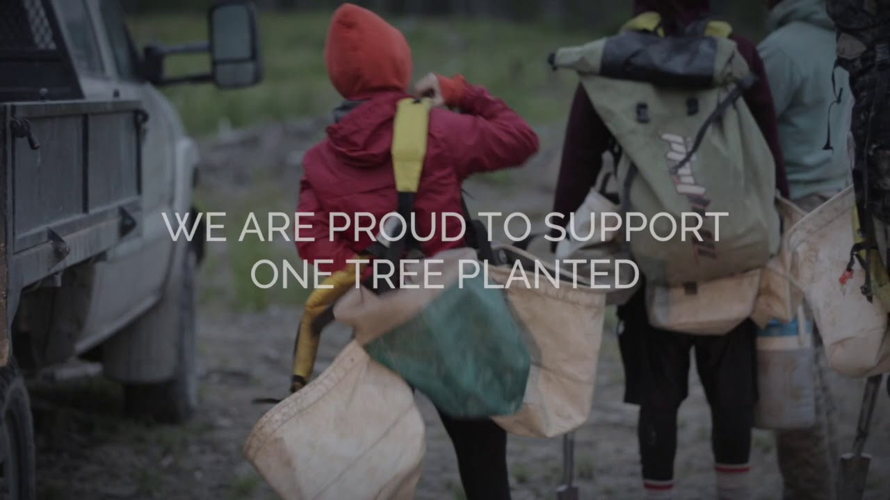 We Are Partnering with One Tree Planted