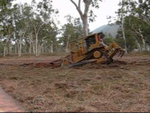 Tree Clearing With A Cat D6 Dozer Youtube