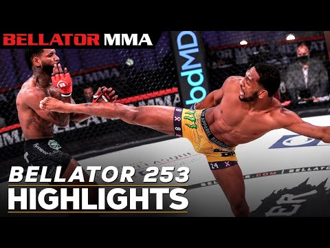 Caldwell vs. McKee | Bellator 253 Main Event Highlights