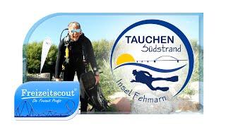 Tauchen Südstrand - Tauchschule Fehmarn - Freizeitscout