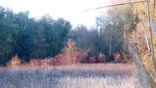 Українська природа.Хмельниччина