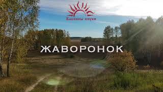 Бабкины внуки - Жаворонок (audio)