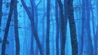 """Enya: """"Portrait ~ Out of the Blue"""""""
