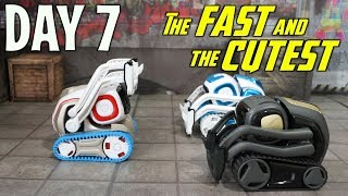 COZMO VS VECTOR - LETS RACE! The Fast and the Cutest - DAY 7 - (FREE VECTOR GIVEAWAY!)