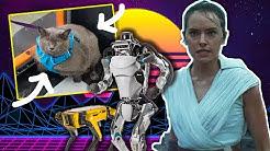 Star Wars trailer, Cinderblock walks, Bosstown Dynamics robot soldier | The BS On the Internet